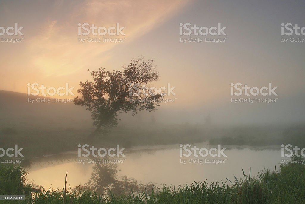 Foggy Mirror royalty-free stock photo