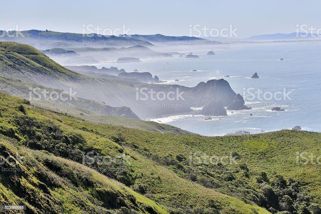 Foggy morning at Bodega Bay, Sonoma County, California's Pacific Coast stock photo