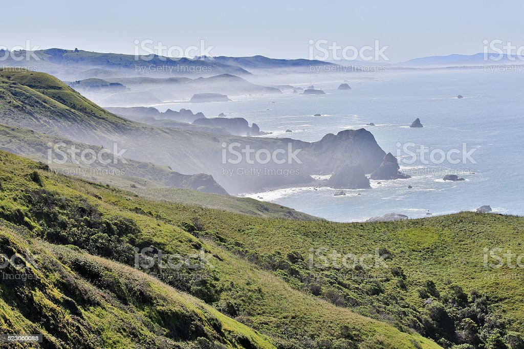 Foggy morning at Bodega Bay, Sonoma County, California's Pacific Coast stock photo
