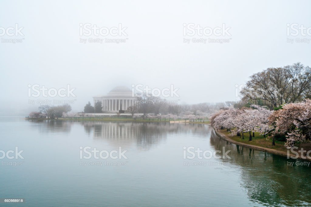 Foggy morning at the Jefferson Memorial stock photo