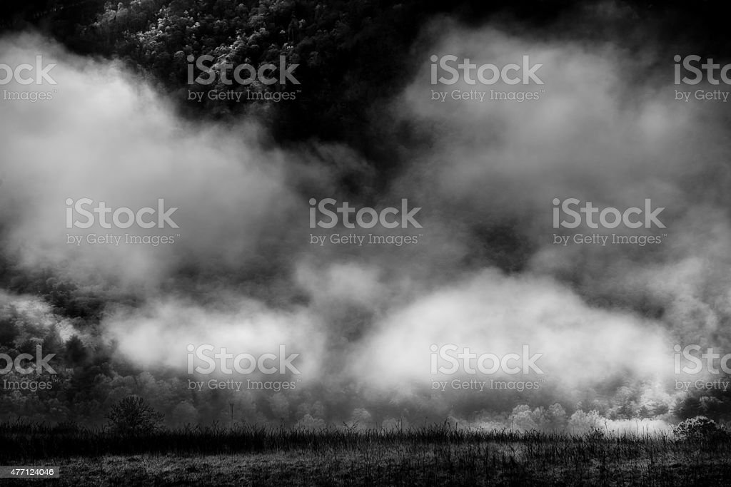 Foggy Morning in Cade's Cove stock photo