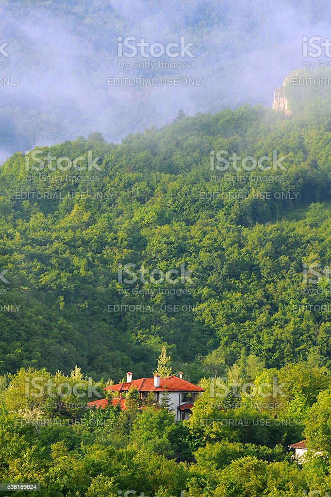 Foggy Morning in May stock photo