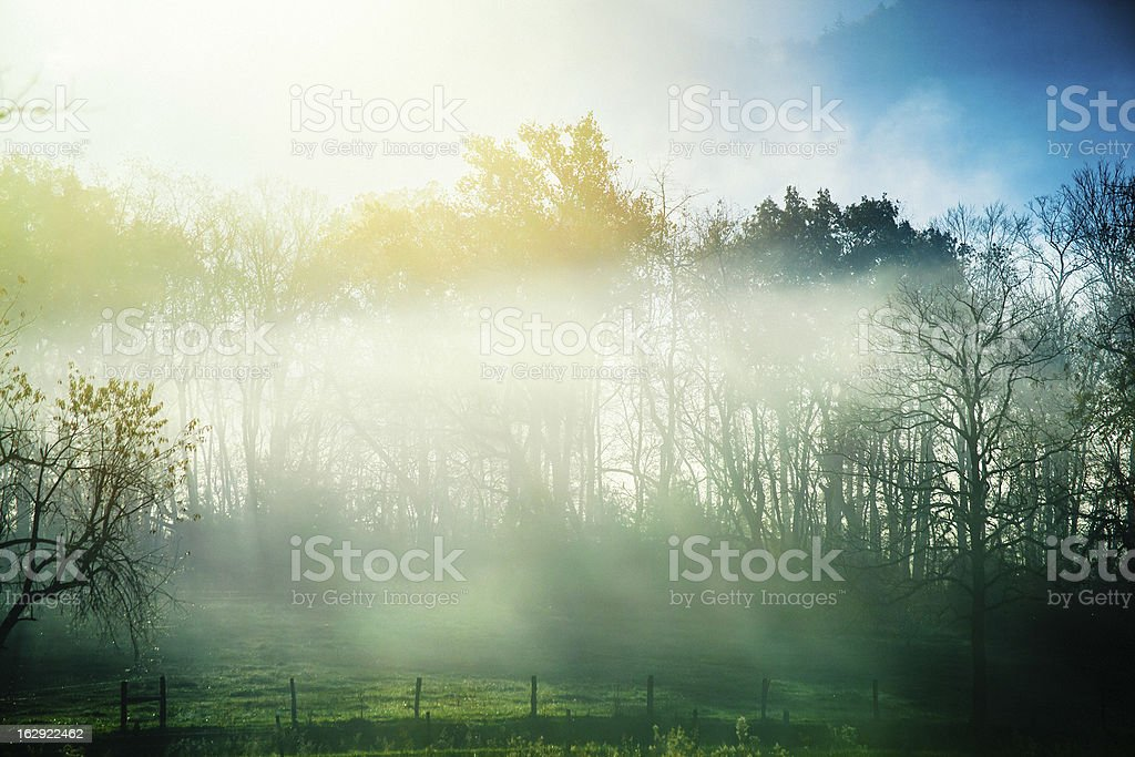 Foggy Morning in the Country Side royalty-free stock photo