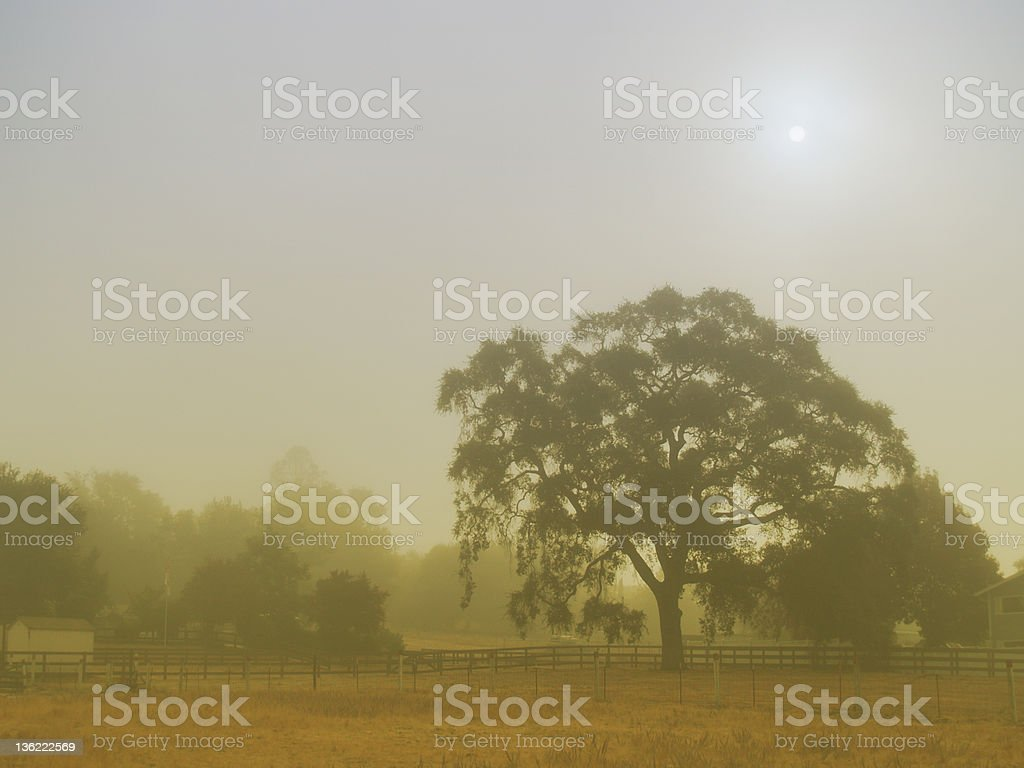 Foggy Morning on the Cuesta Grade stock photo