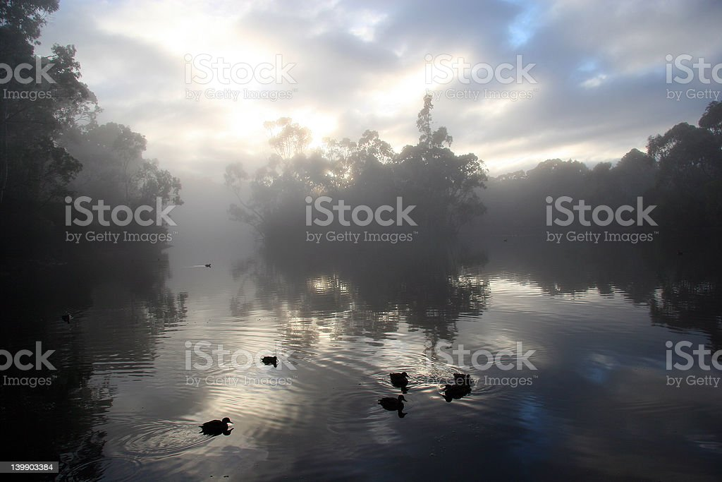 Foggy Morning stock photo