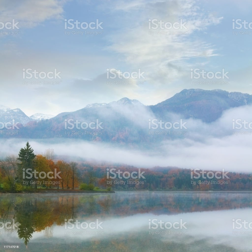 foggy mountain lake at dawn with pine forest stock photo