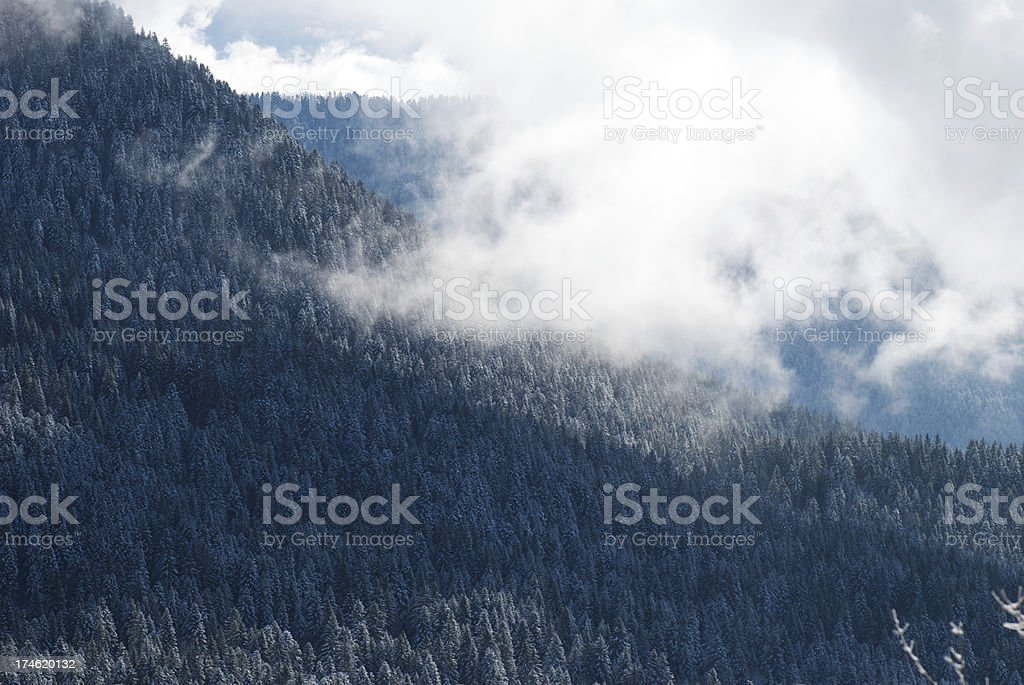 Foggy mountain stock photo