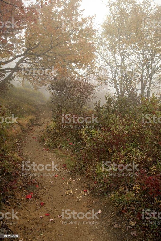 foggy mountain trail in autumn royalty-free stock photo