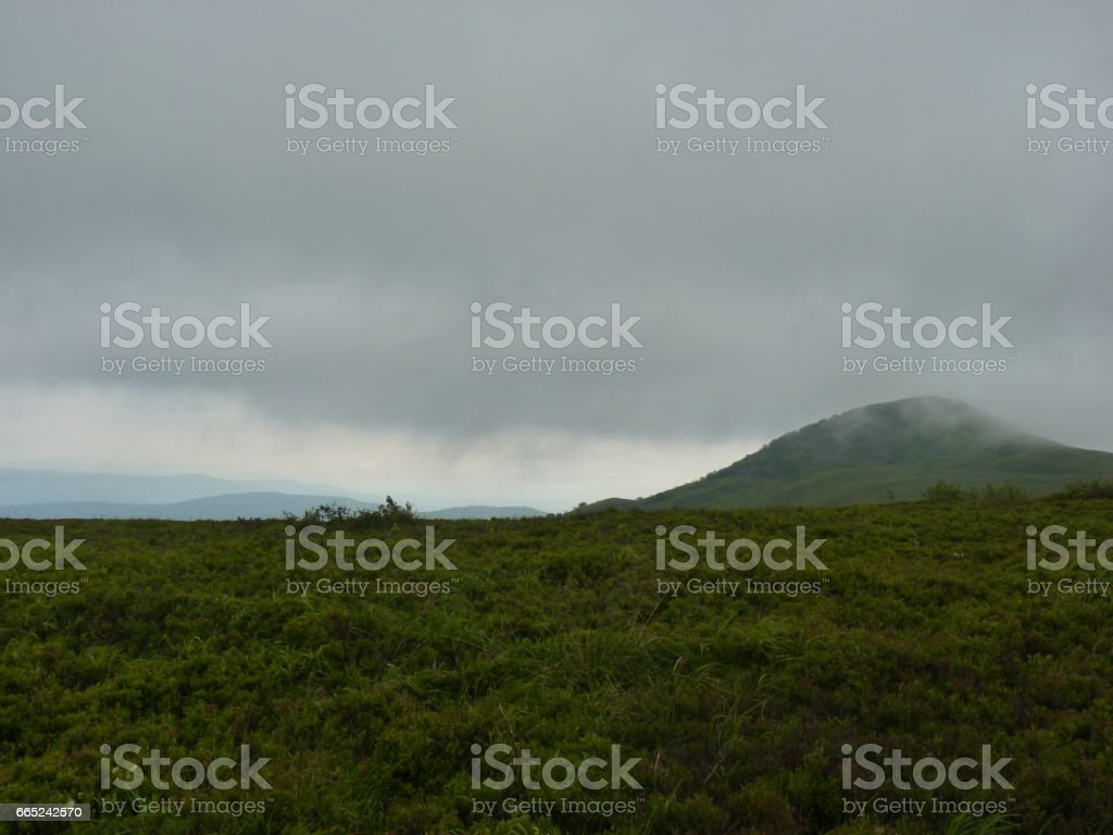 Foggy mountains forest and meadow. Beautiful landscape rainy clouds moody weather colors scenic background. Bieszczady mountains, Poland stock photo