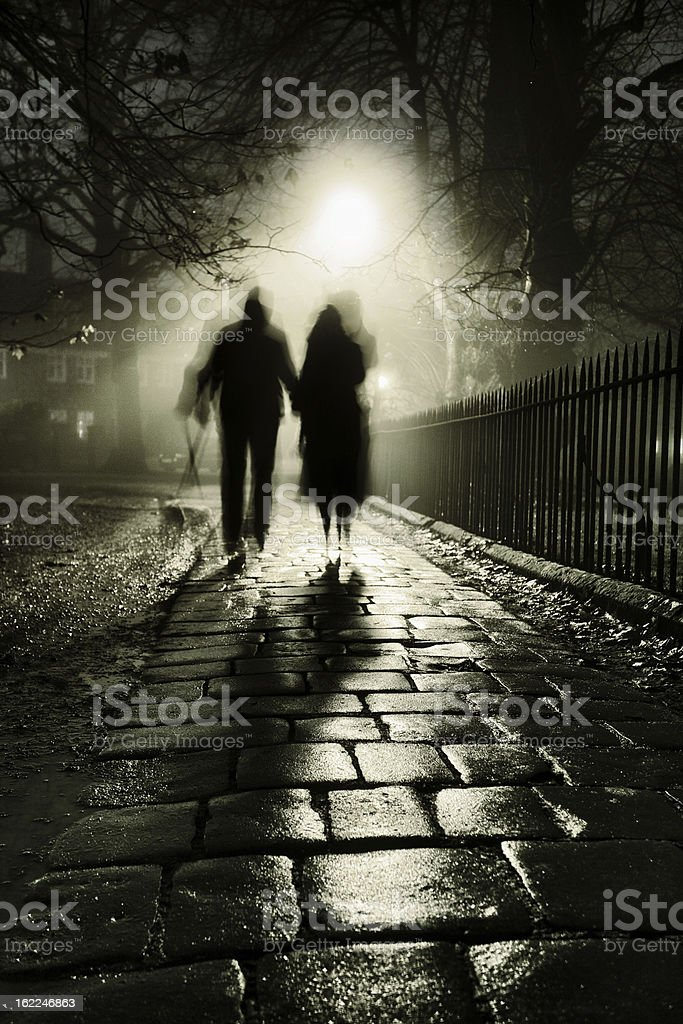 Foggy night royalty-free stock photo