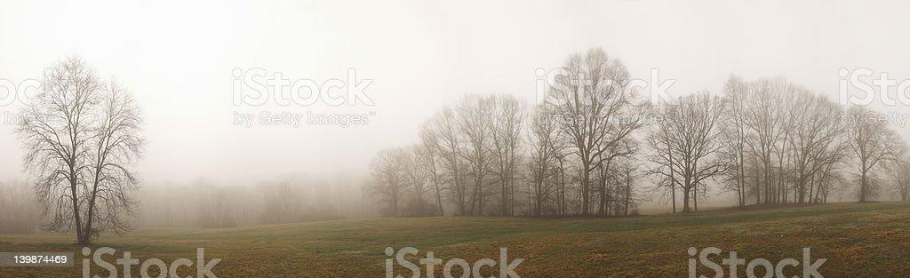 Foggy panorama royalty-free stock photo