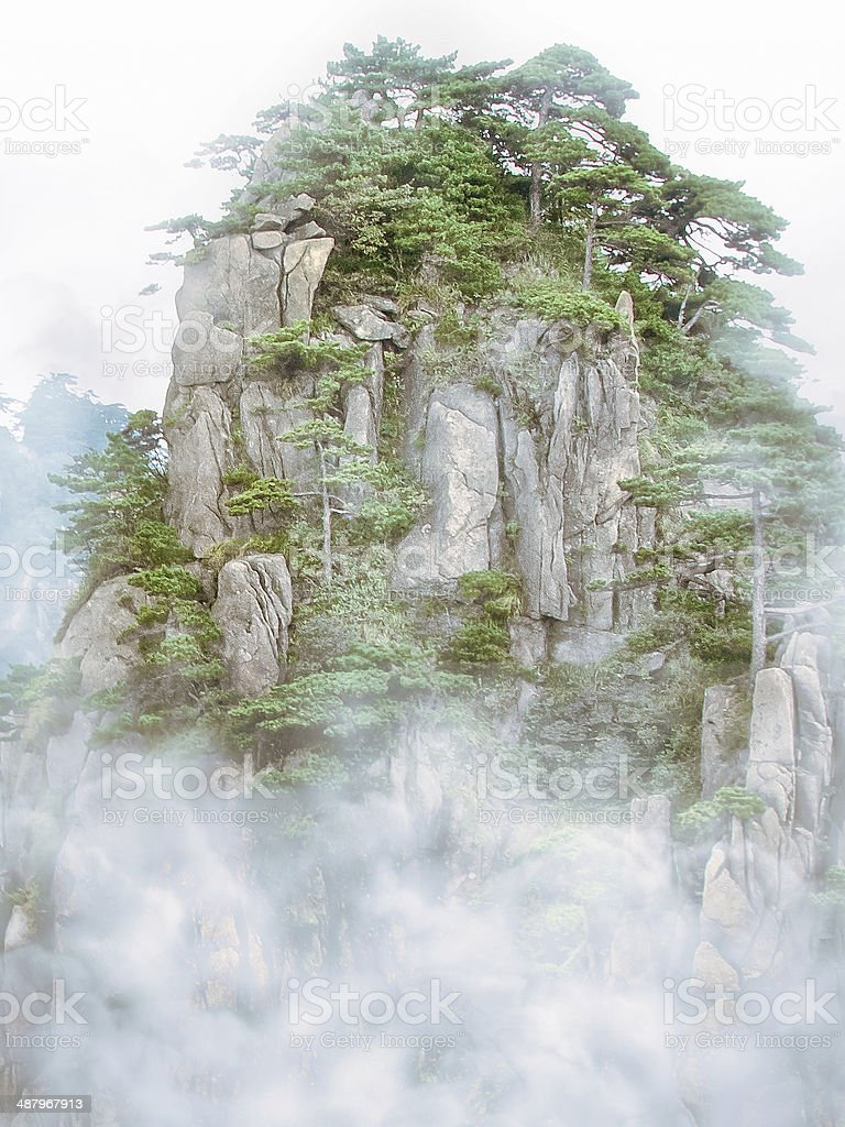 Foggy pines in Huangshan stock photo