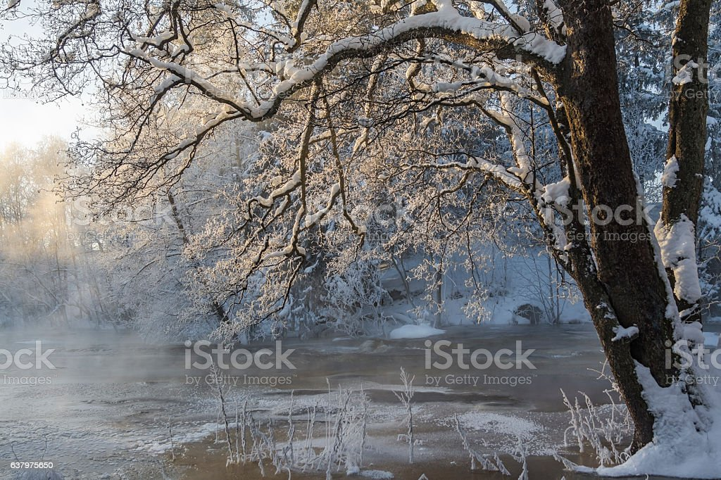 Foggy river in winter stock photo