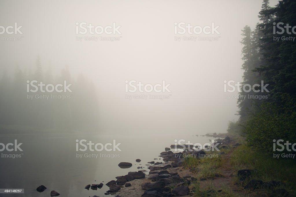 Foggy river stock photo