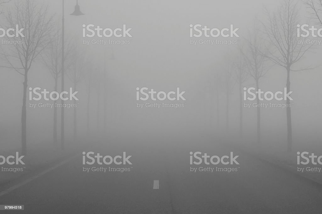 Foggy road, alley in bad weather conditions stock photo