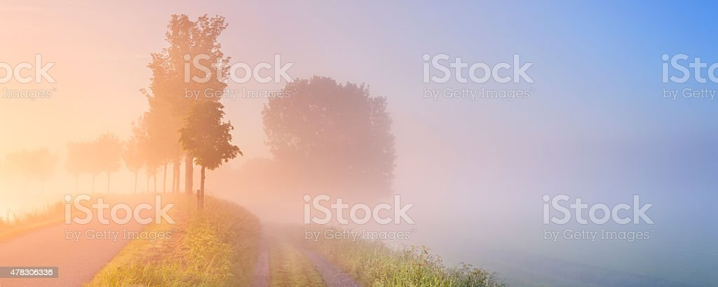 Foggy sunrise in typical polder landscape in The Netherlands stock photo