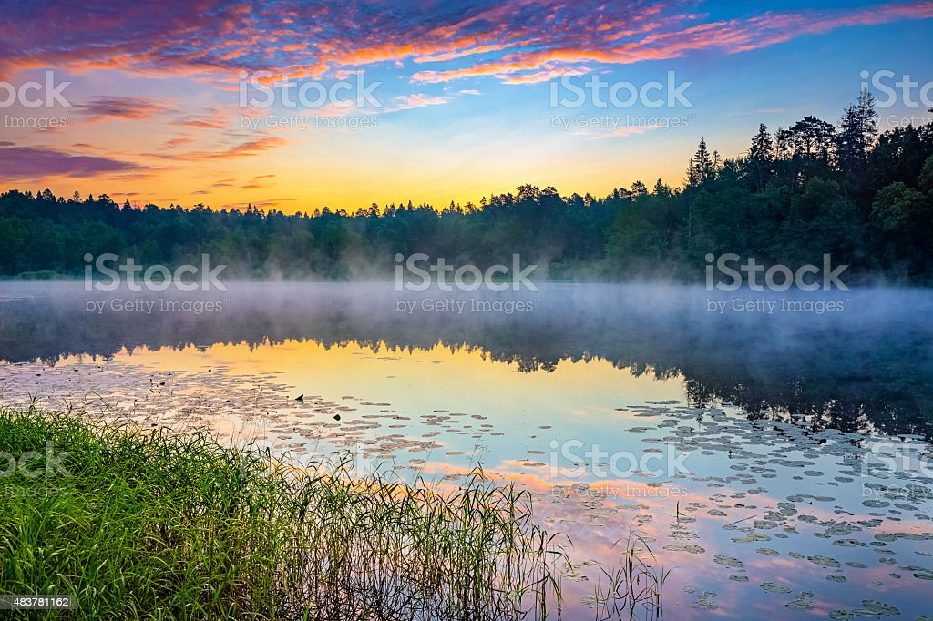 Foggy sunrise on a lake stock photo