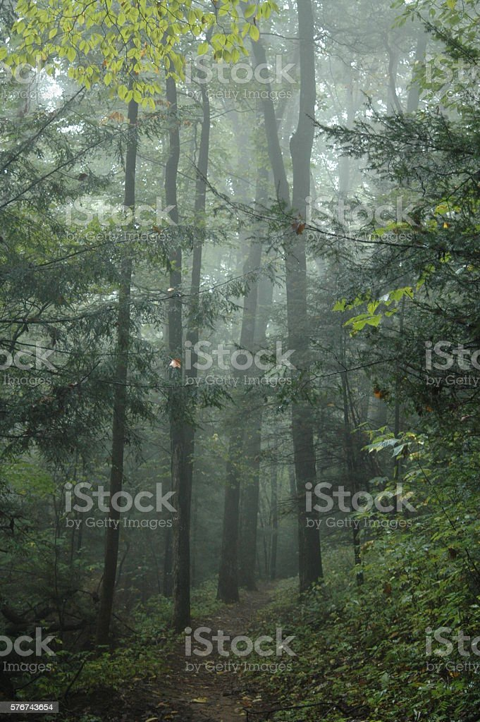 Foggy trail in the mountains stock photo