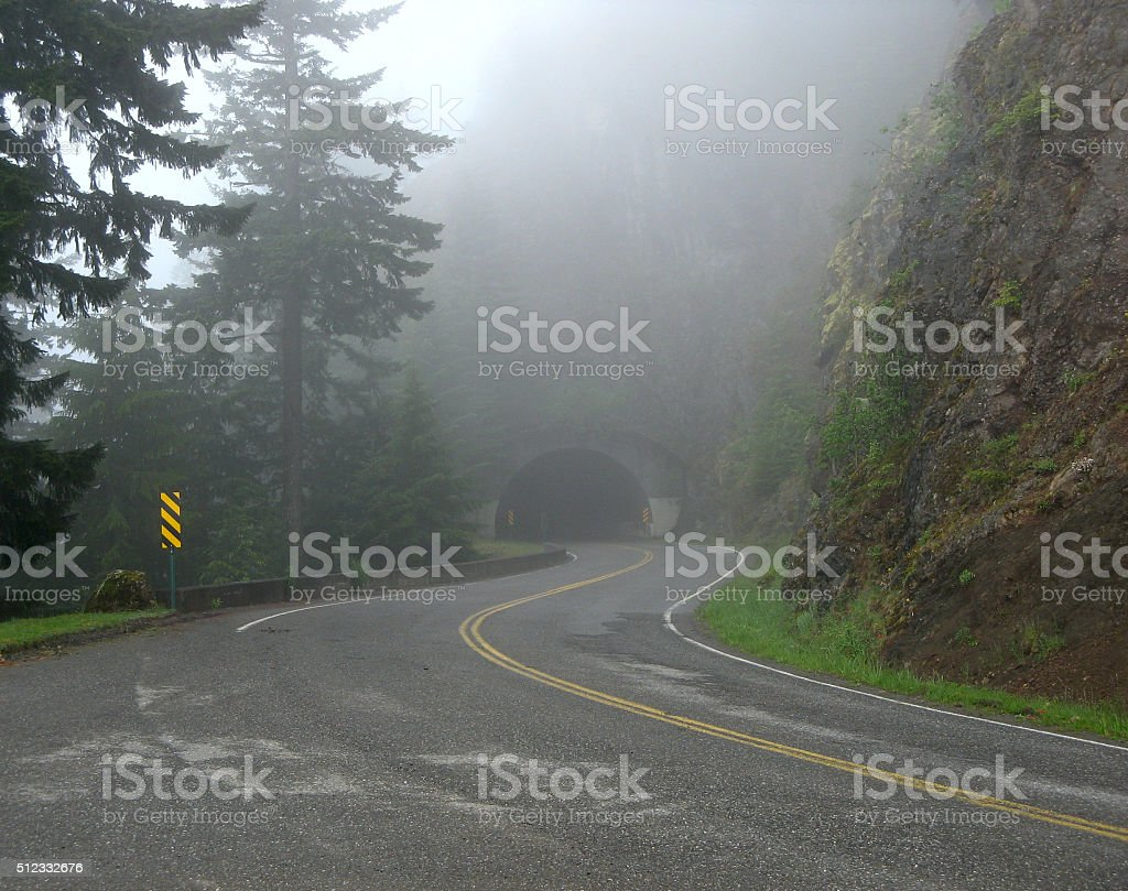 Foggy Tunnel royalty-free stock photo