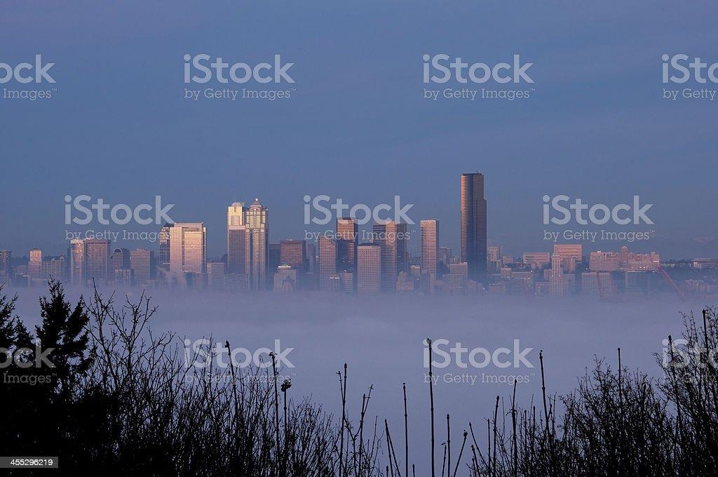 Foggy Twilight stock photo