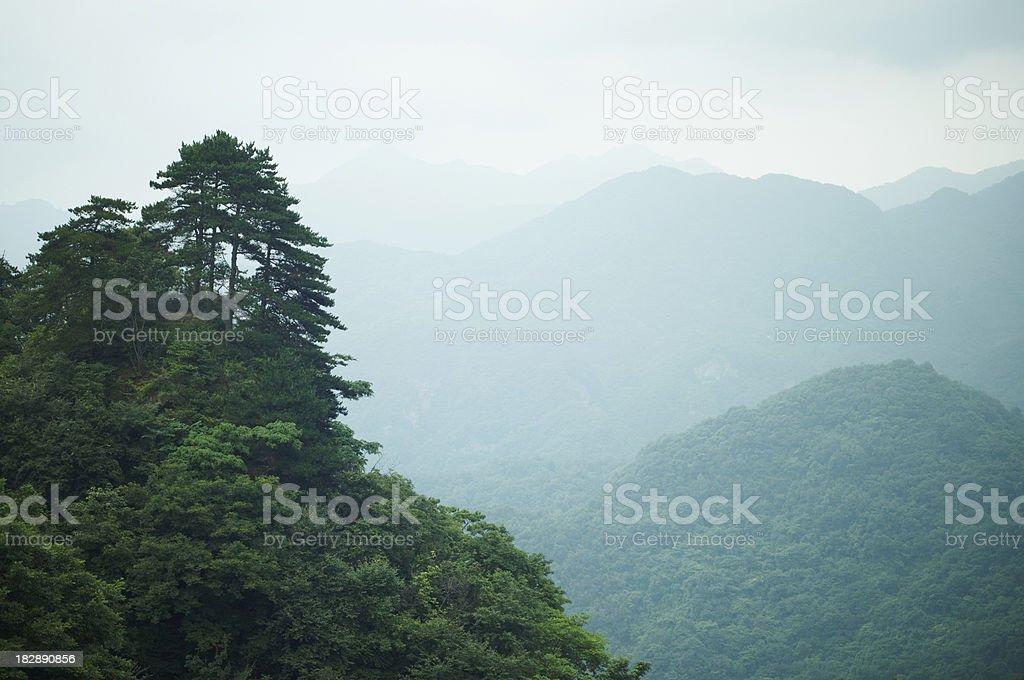 Foggy Wudang Shan mountains. stock photo