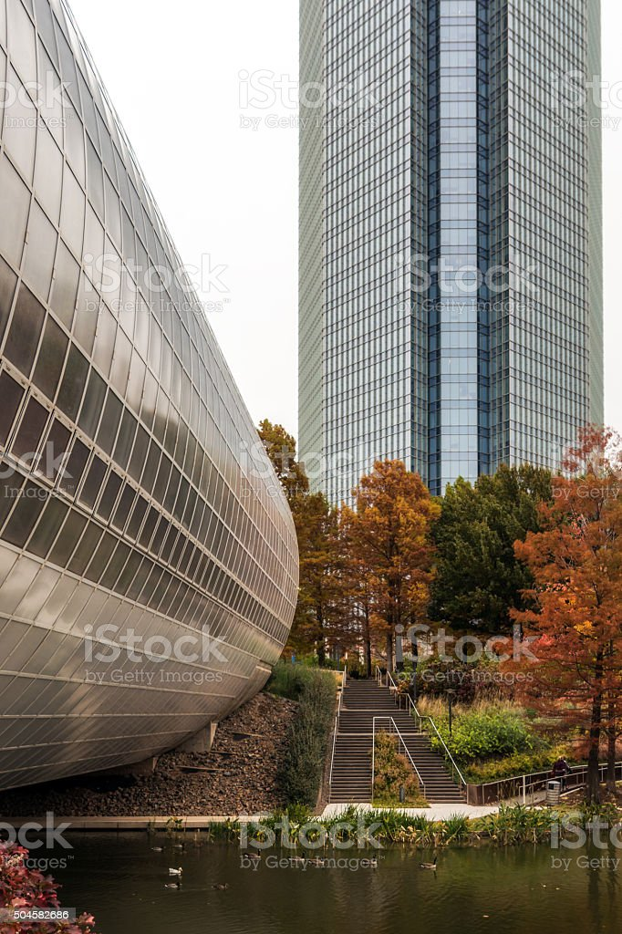 Folage In The City stock photo