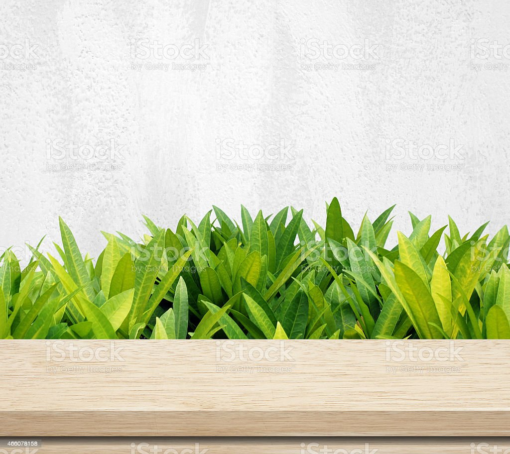 Foliage growing next to an outdoor table  stock photo
