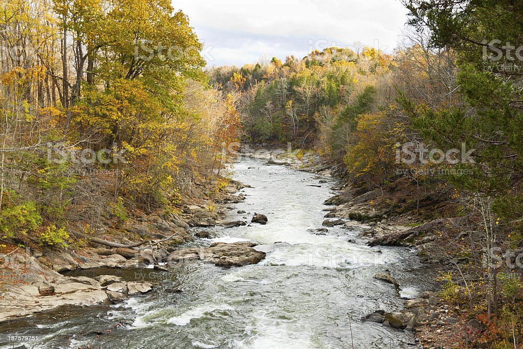 Foliage in Connecticut. stock photo