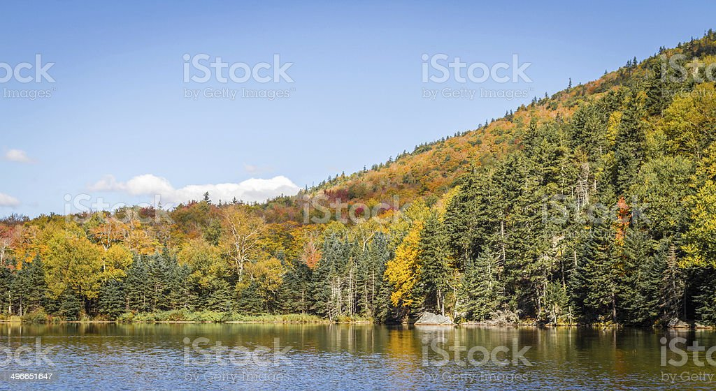 Foliage in the White Mountains National Forest, New Hampshire, USA stock photo