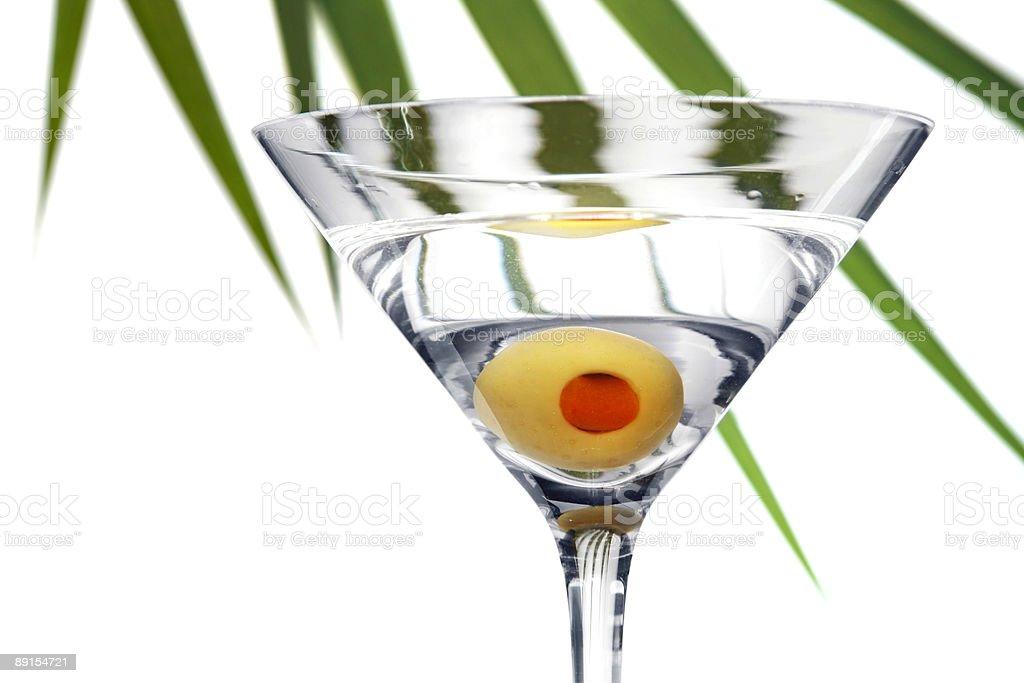Foliage Martini royalty-free stock photo