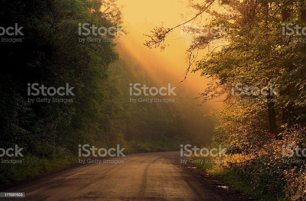 Follow Your Own Road stock photo