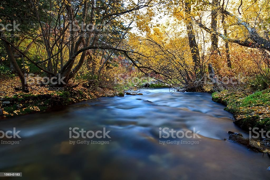 Following the Big Cottonwood River royalty-free stock photo