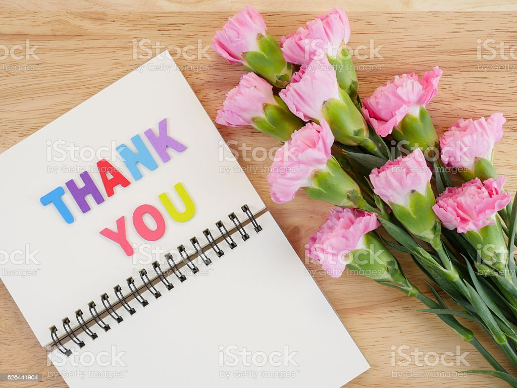Font Thank you on blank notebook and Carnation flower stock photo