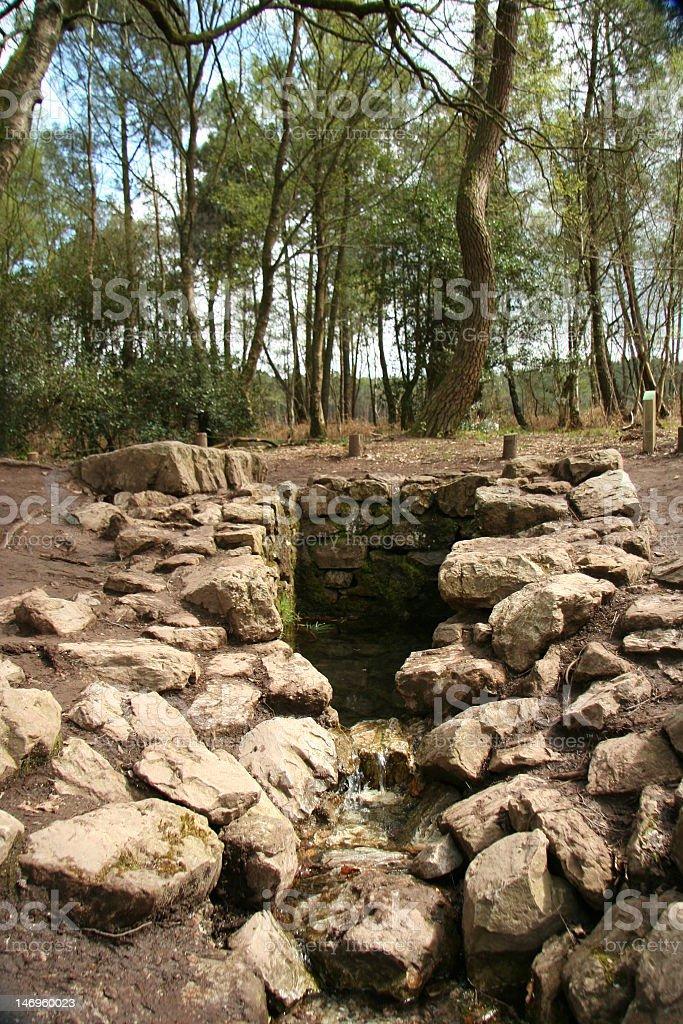 Fontaine de Barenton, Broceliande, Brittany stock photo