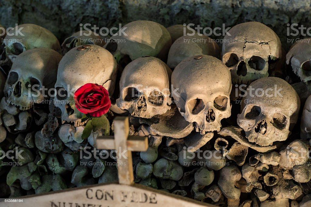Fontanel cemetery in Naples, Italy stock photo