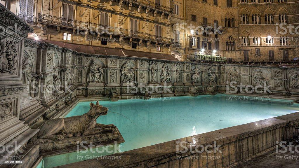 Fonte Gaia, Siena, Italy - HDR stock photo