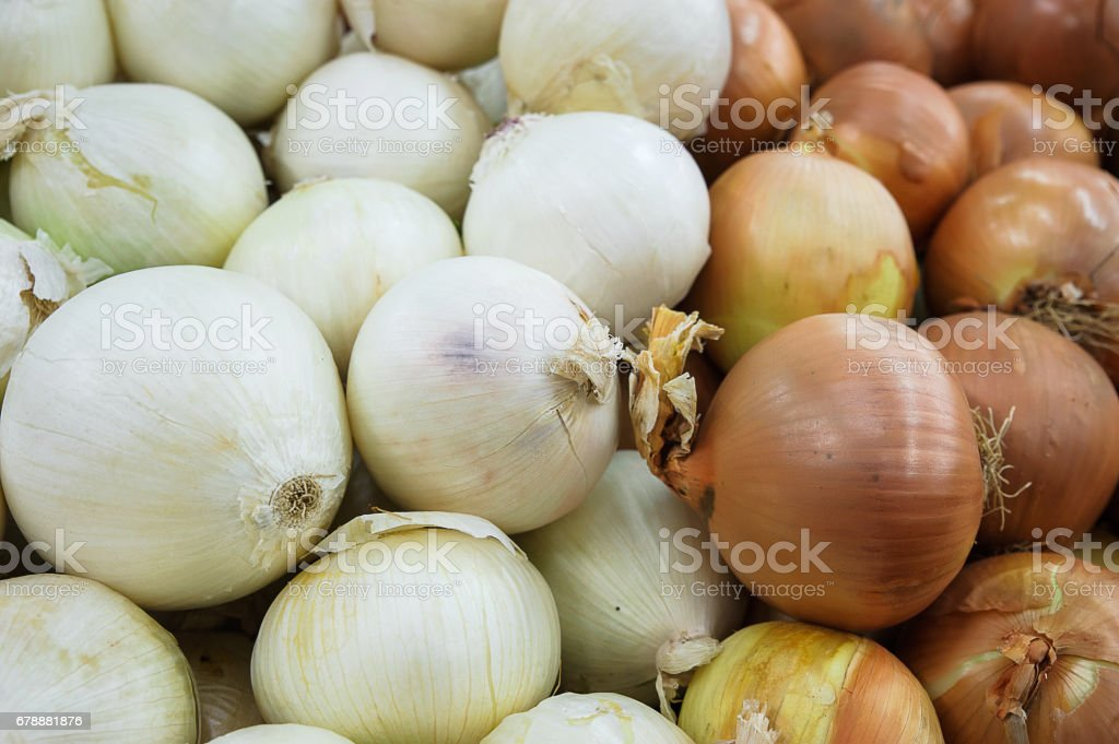 Food background - pile of white and golden onion varieties stock photo