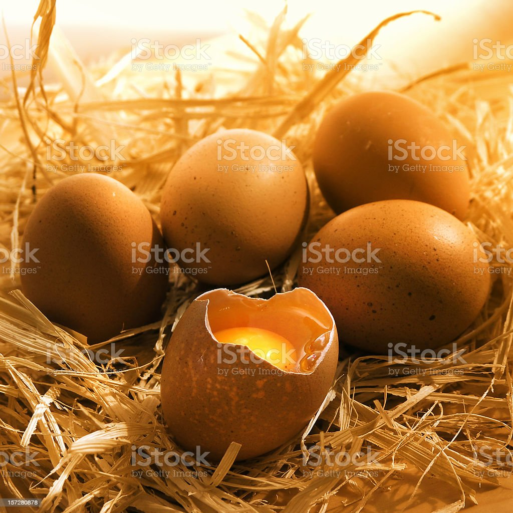 food: eggs on straw royalty-free stock photo