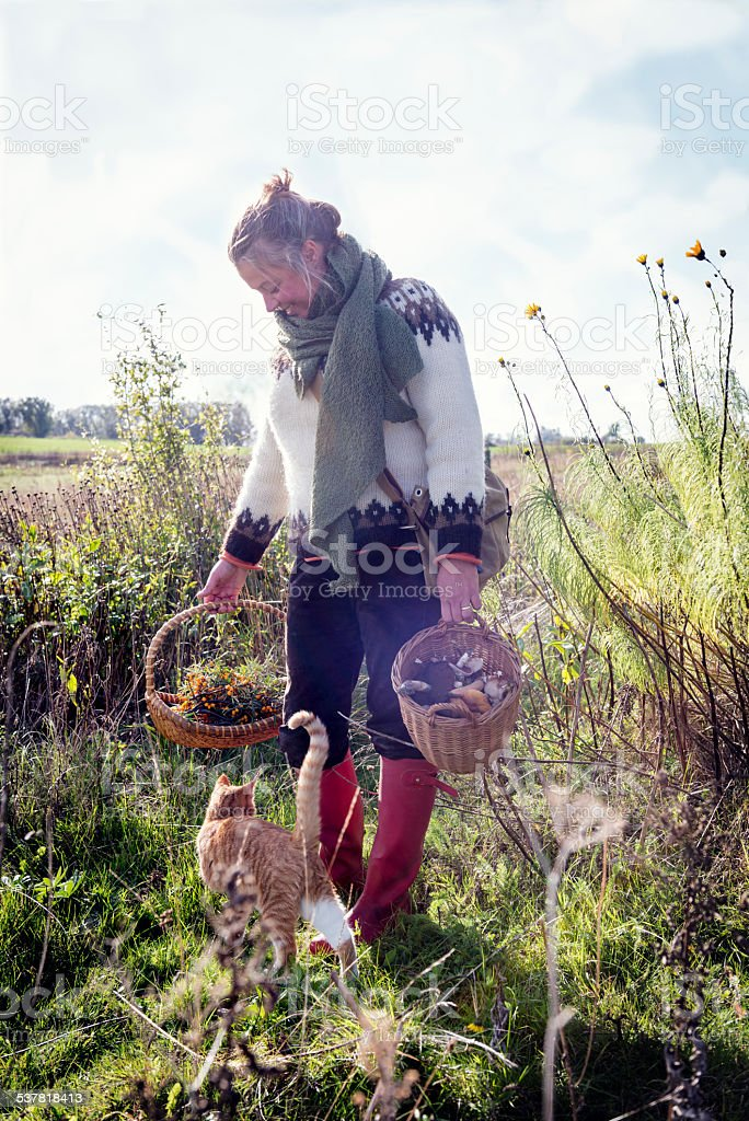 Food Forager and Cat at Work stock photo