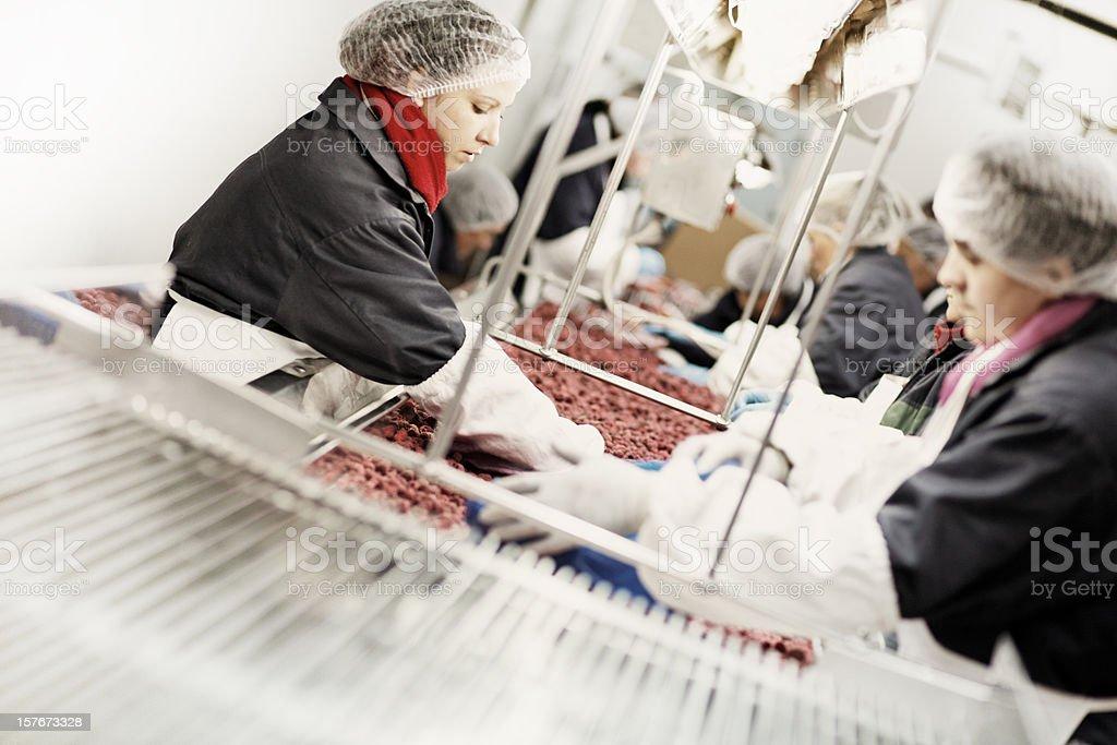 Food industry work. People, human workers. royalty-free stock photo