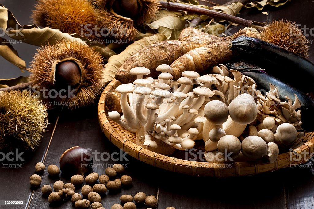 Food ingredients in autumn stock photo