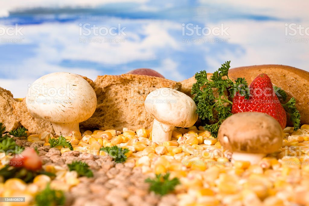 Food landscape royalty-free stock photo