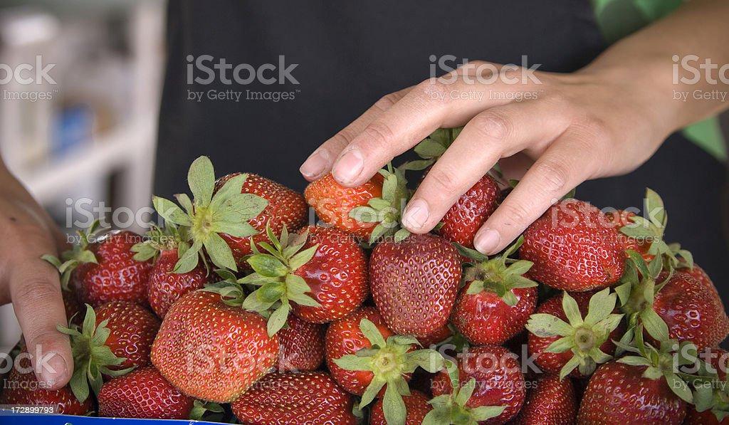 Food Preparation, Manual Worker Packing Farm Fresh Strawberries at Market royalty-free stock photo