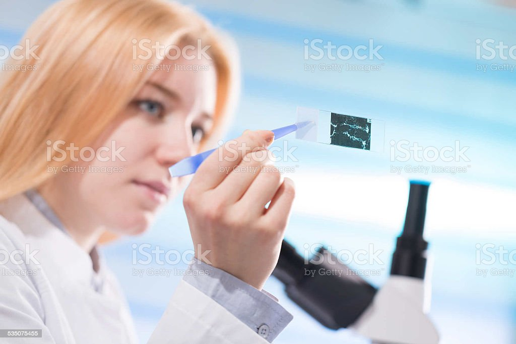 food quality control stock photo