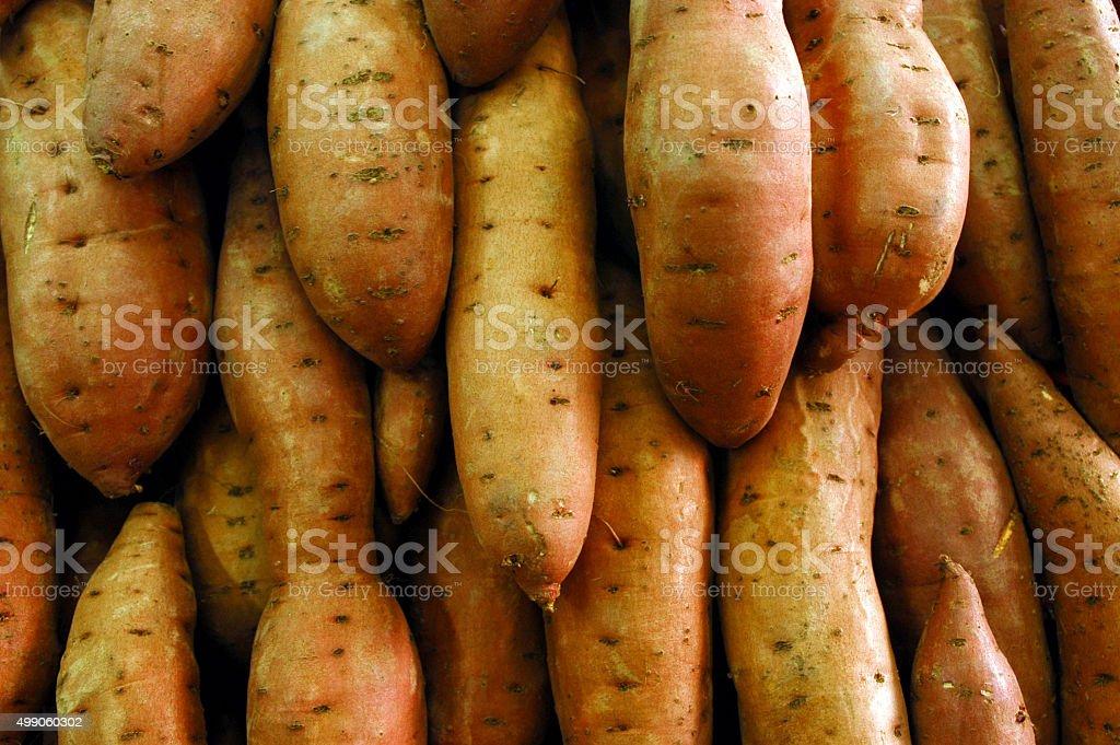 Food - Vegetables stock photo