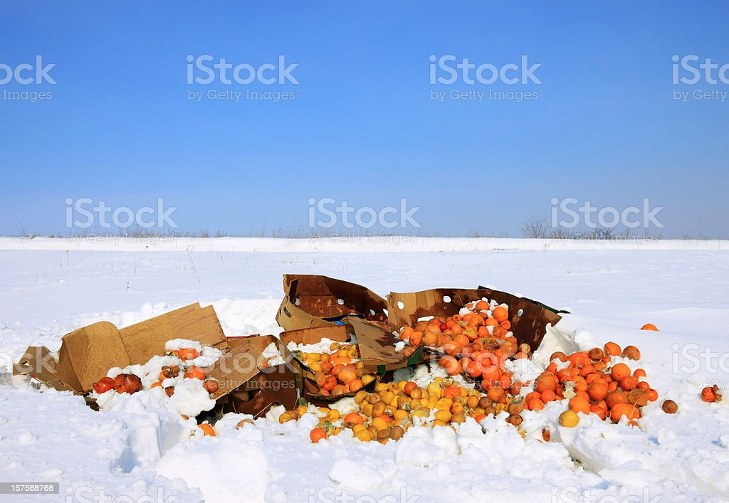 Food Waste royalty-free stock photo