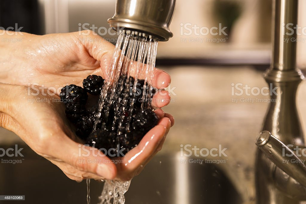 Food:  Woman washing fresh ripe blackberries at the kitchen sink. royalty-free stock photo