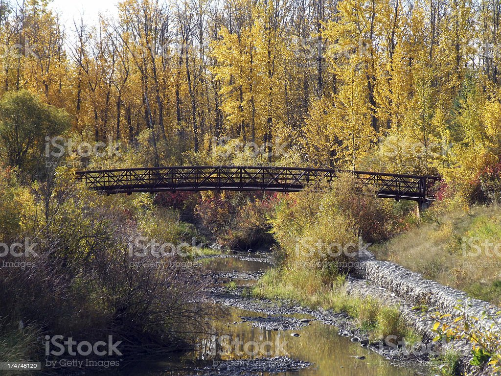 Foot bridge at Muskoseepi Park in Autumn stock photo