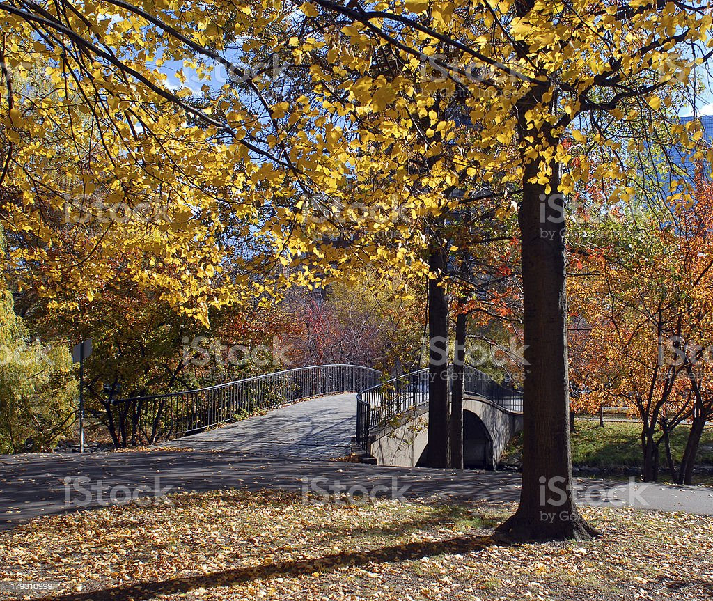 Foot Bridge in Autumn II stock photo