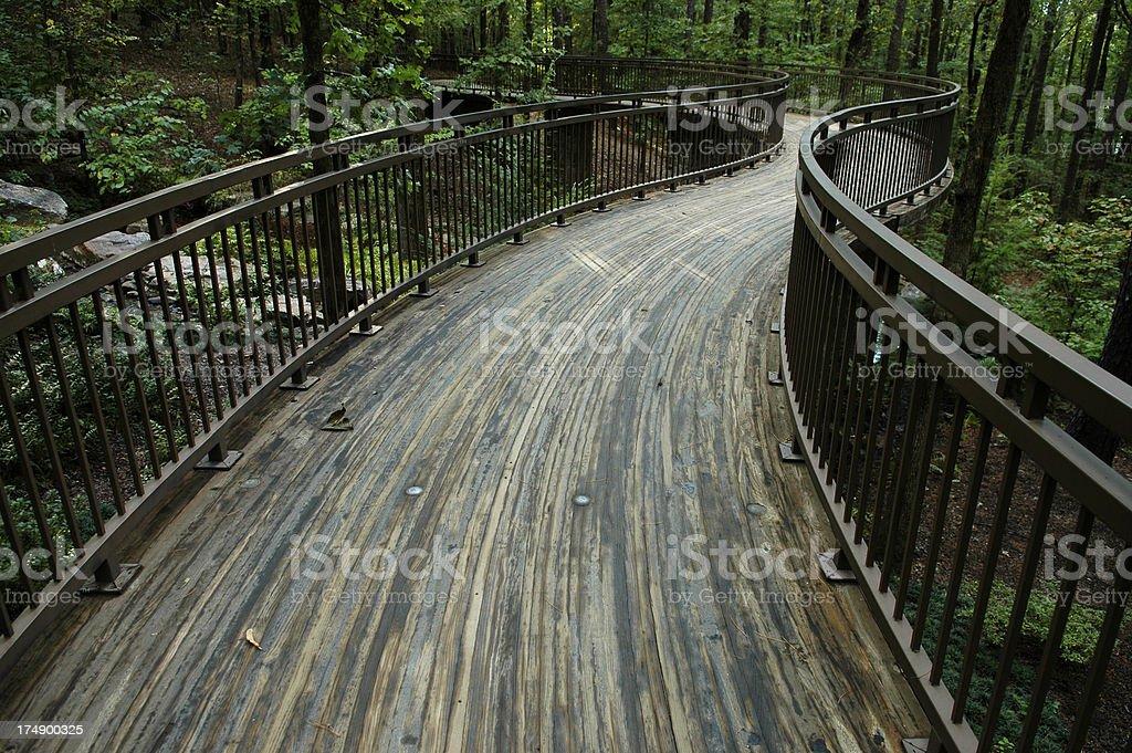 Foot Bridge into Woodlands stock photo
